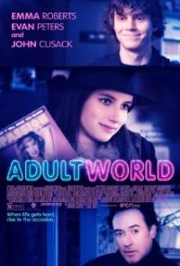 Adult World (2013) movie poster